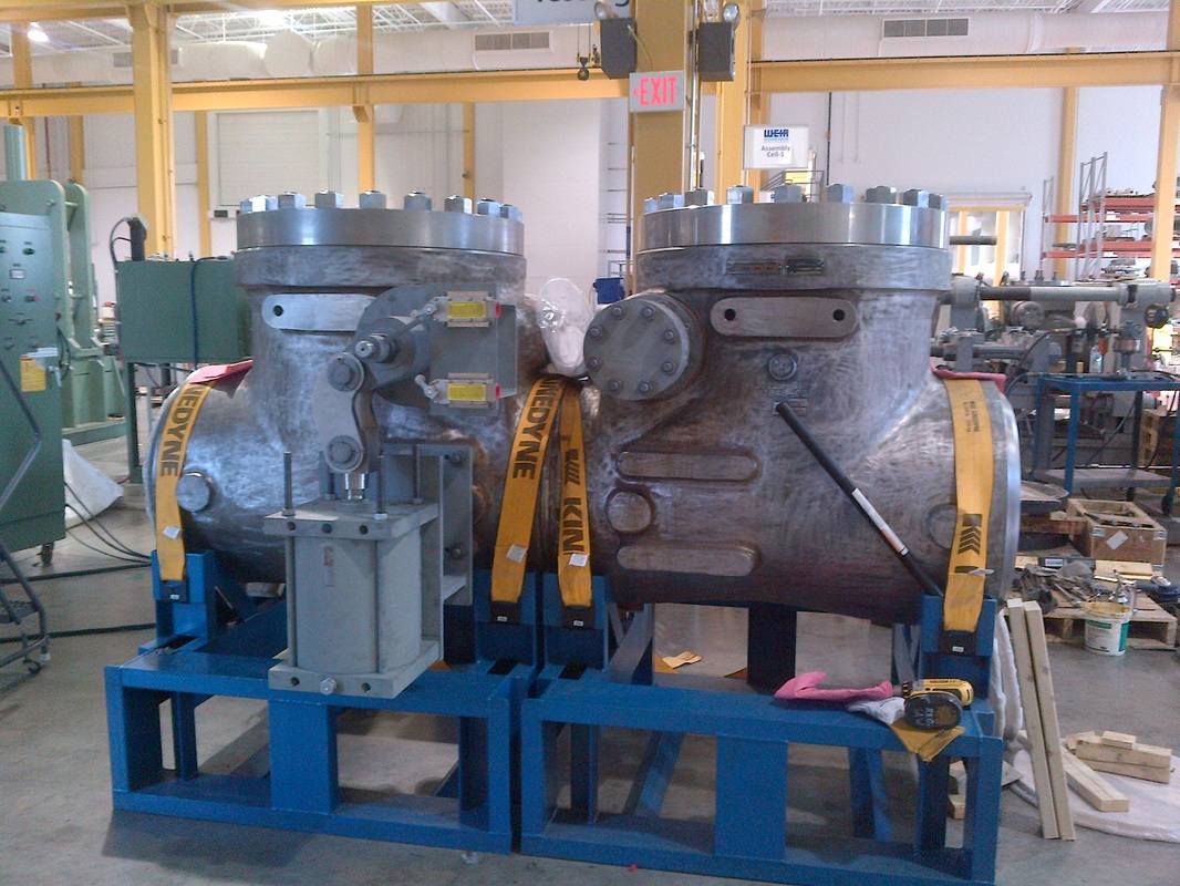 Main Steam Isolation Valve and Check Valve Assembly